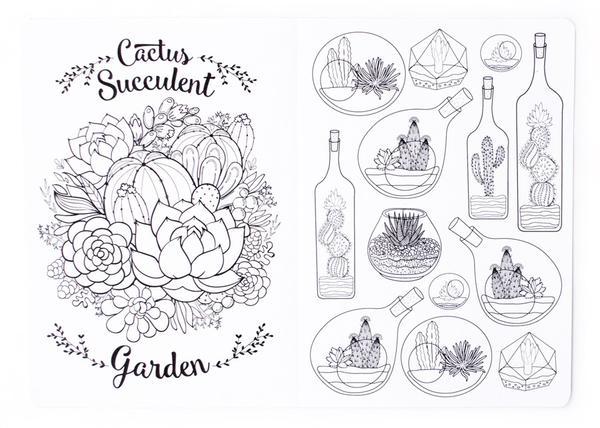 cactus_succulents2