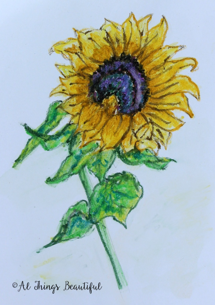 watercolorpencil5