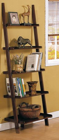 ladder-bookshelves